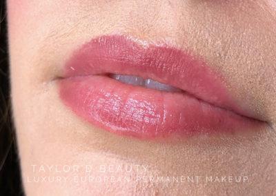 HEALED Luxury Lips 💋